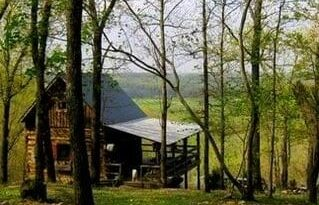 Aunt Phoebe's Perch Log Cabin in spring
